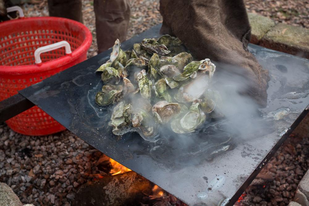 georgia_oysters-8653.jpg