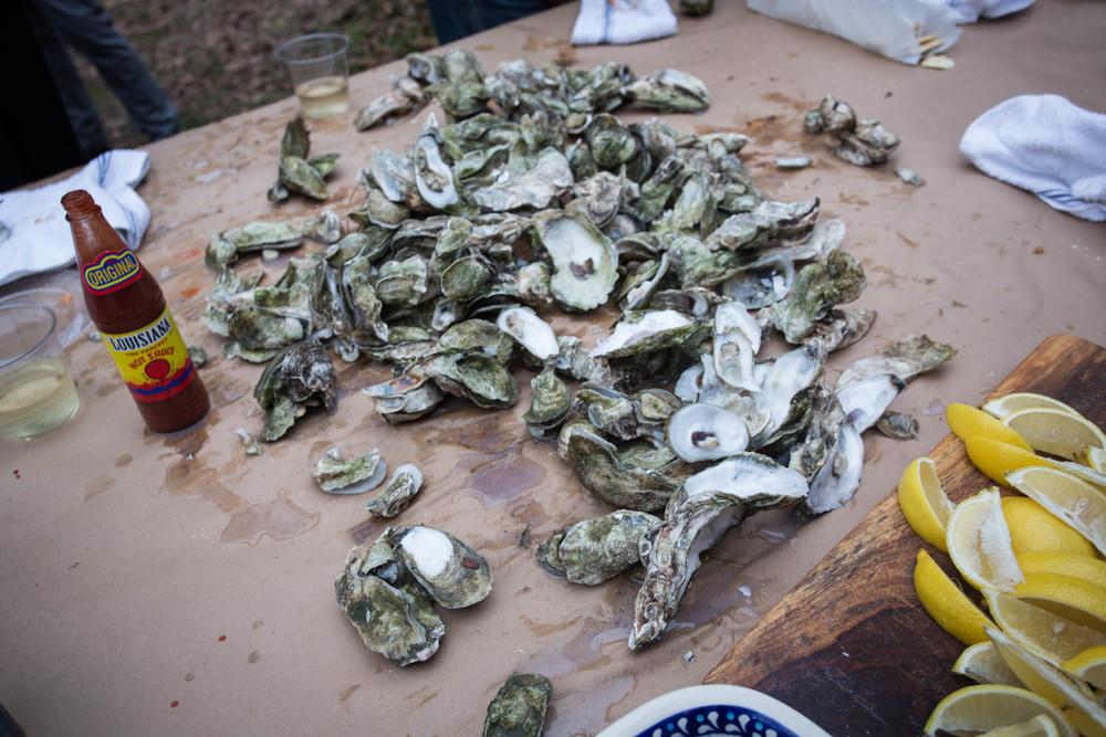 georgia_oysters-8675.jpg