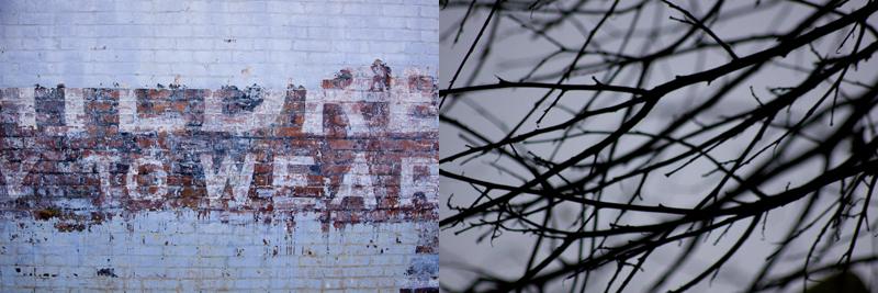 brickewall.wintertree.jpg