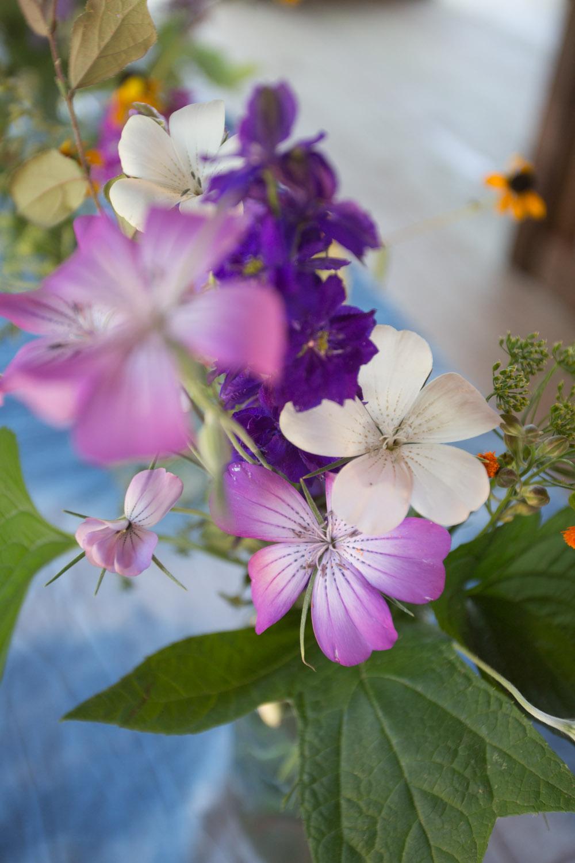 sydneys wedding flowers-7166.jpg