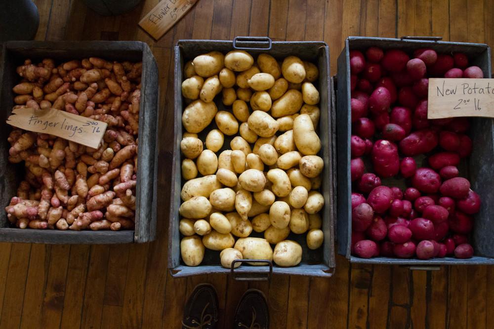 farmer's market inspiration-4557.jpg