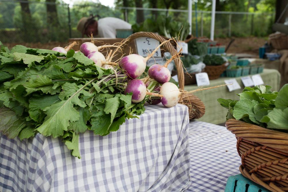 farmer's market inspiration-9819.jpg