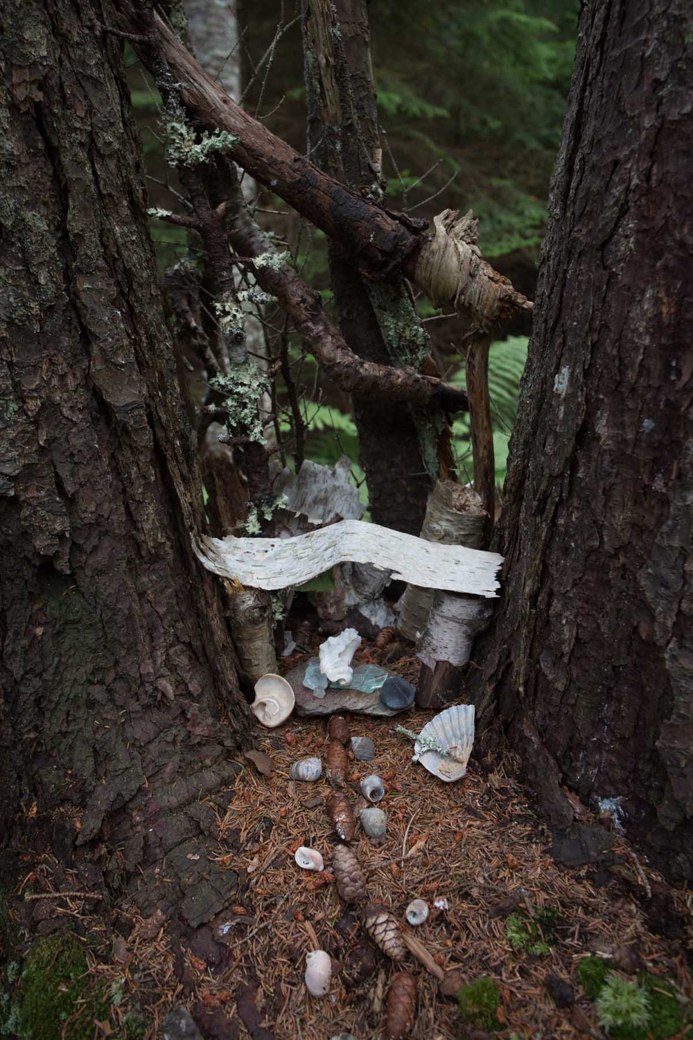 maine_fairy houses-201507250442.jpg