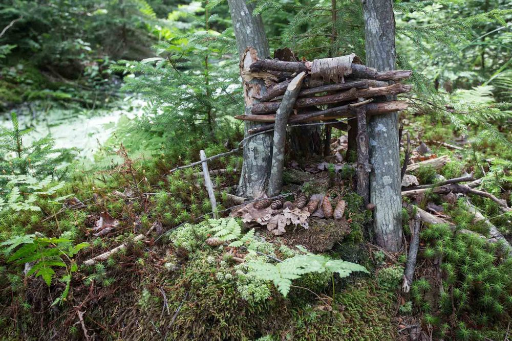 maine_fairy houses-201507250420.jpg