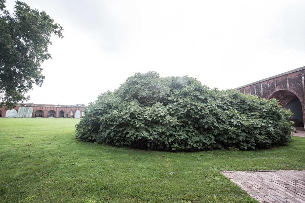 fort pulaski-201508233890.jpg