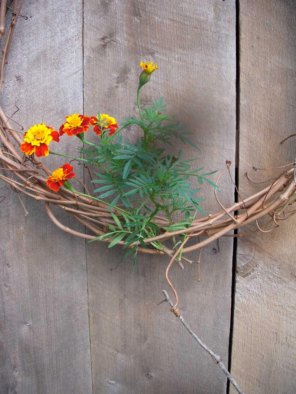 RW_wreaths-4434.jpg