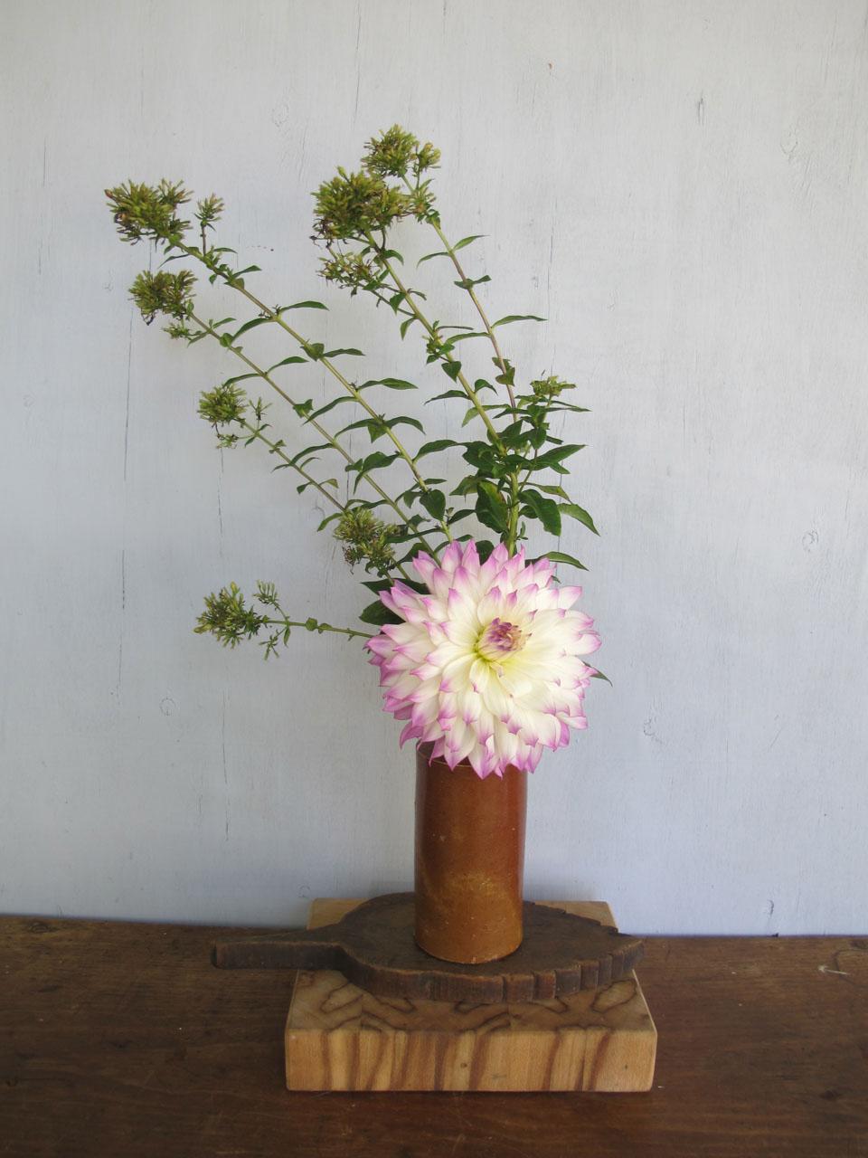 RW_dahlia bouquets-4219.jpg