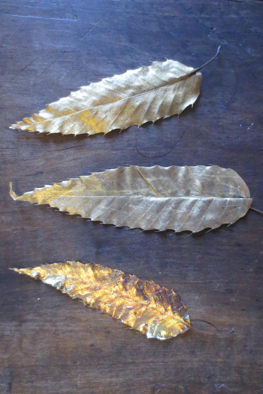 RW_gold leaves-2487.jpg