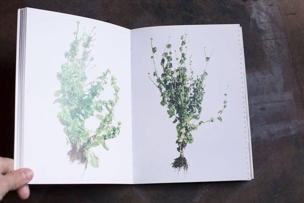 RA_fave books-IMG_2196.jpg