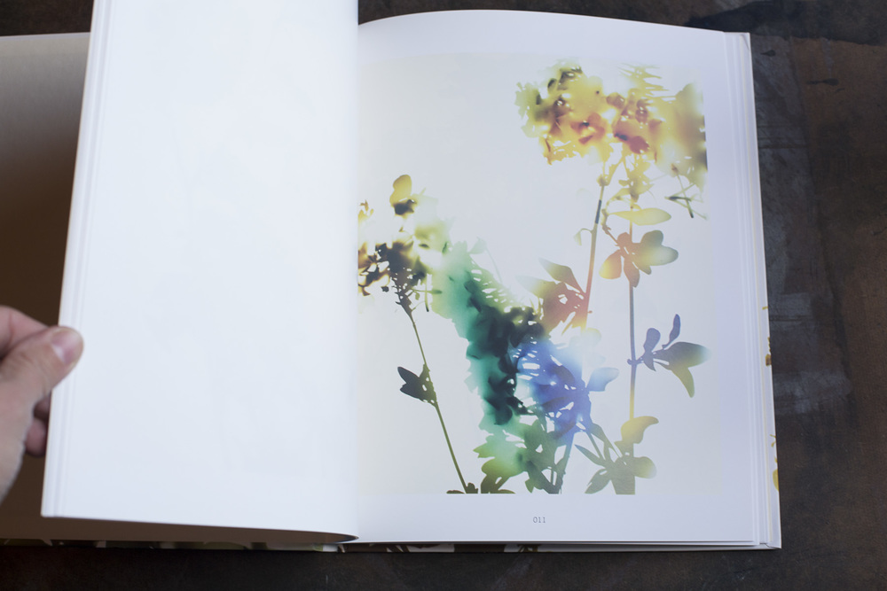 RA_fave books-IMG_2194.jpg