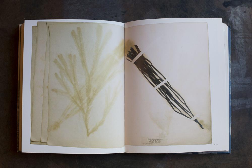 RA_fave books-IMG_2221.jpg