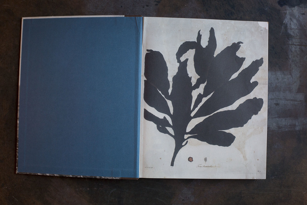 RA_fave books-IMG_2223.jpg