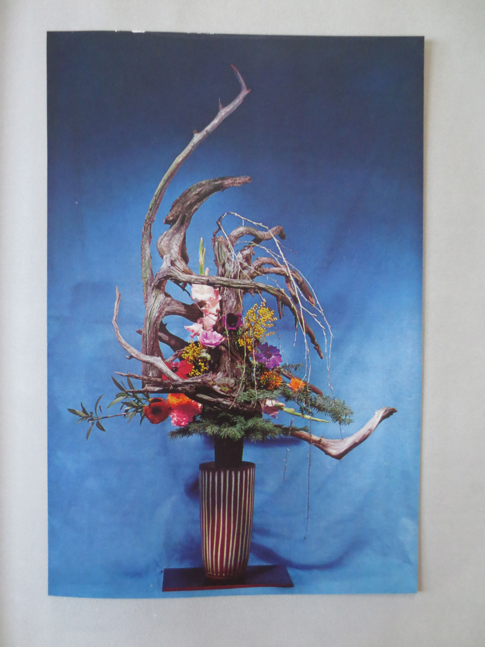 RW_fave flower books-2859.jpg