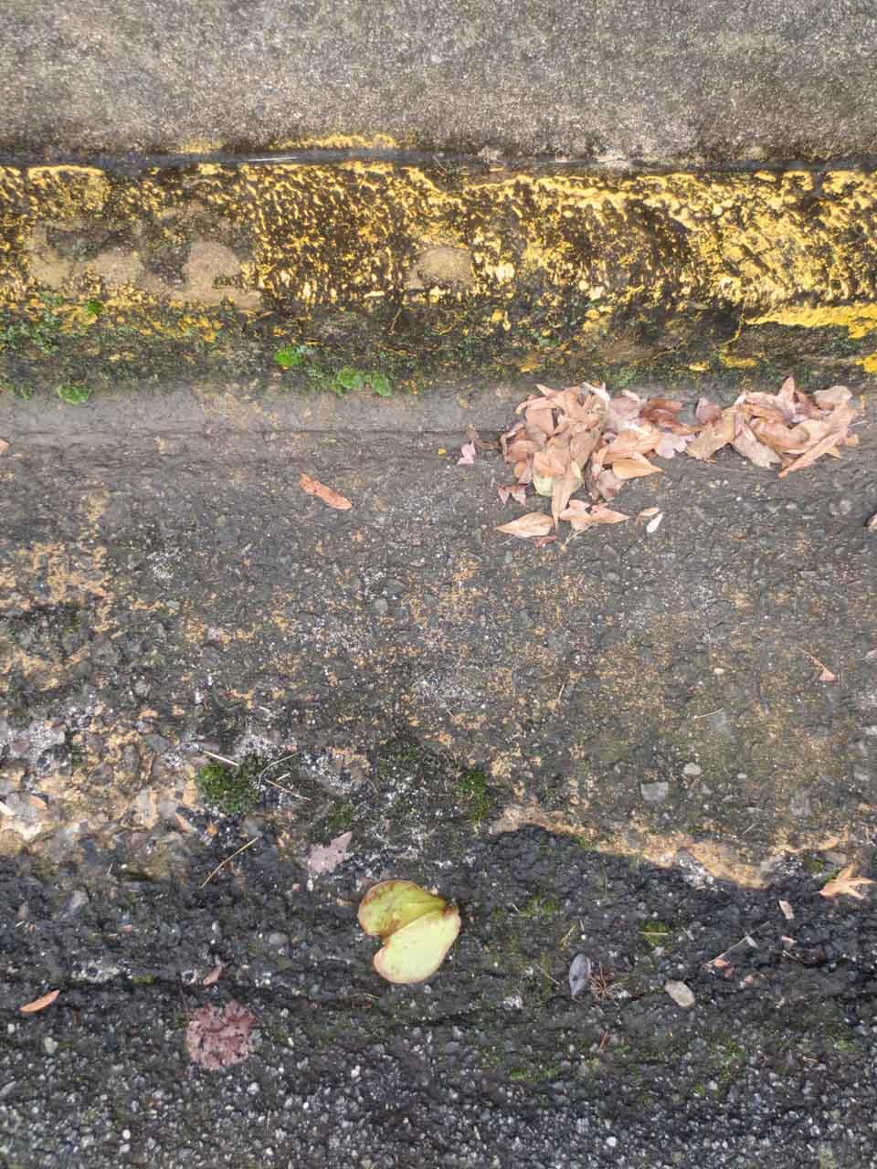 rw_concrete paintings-3358.jpg