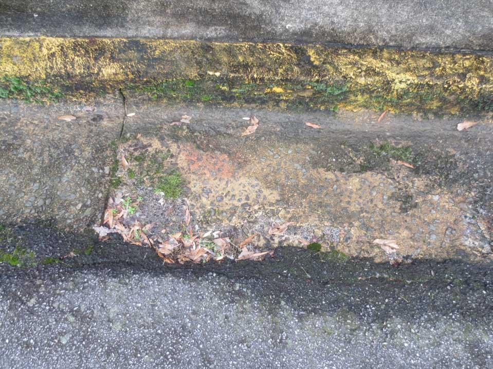 rw_concrete paintings-3360.jpg