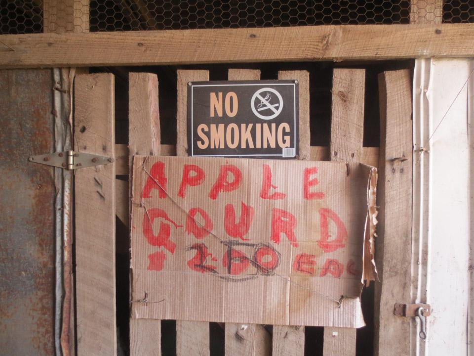 rw_gourd farm-3924.jpg