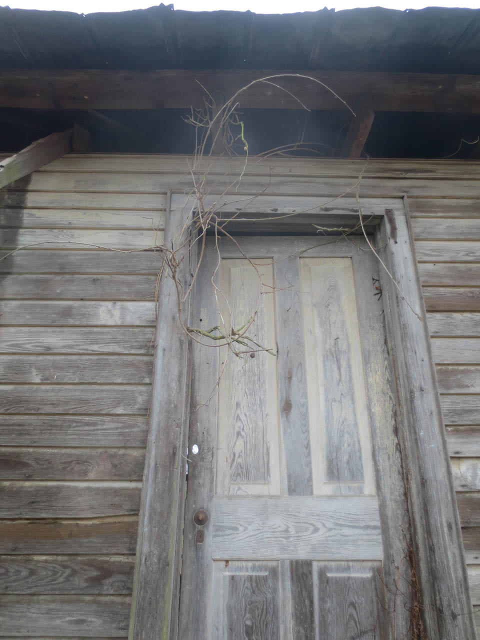 rw_sharecroppers cabin-3688.jpg