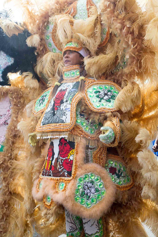 mardi gras indians-201503153338.jpg