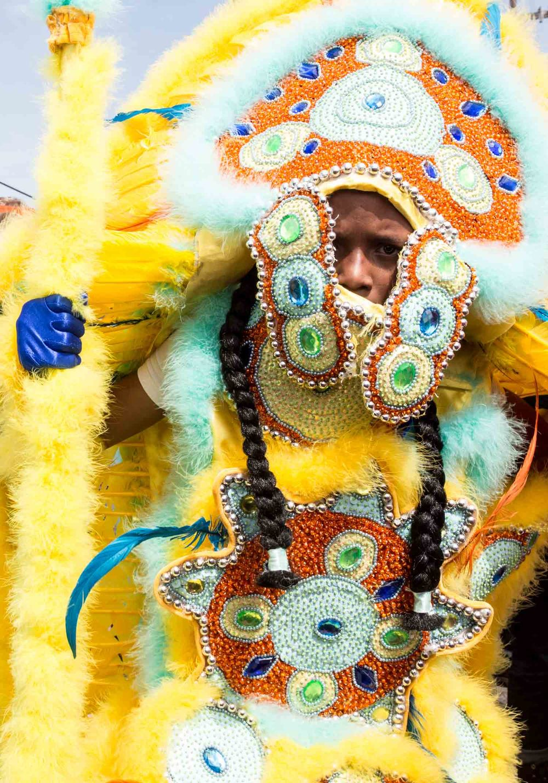 mardi gras indians-201503153419.jpg