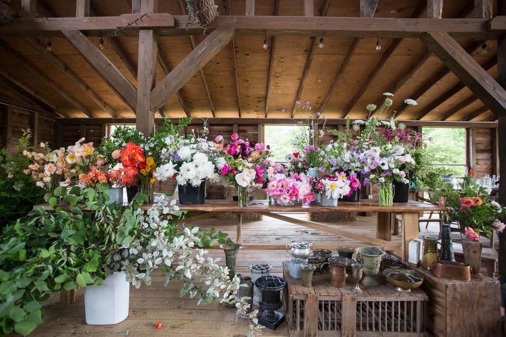 RA_spring beauty day_flower station-201604306579.jpg