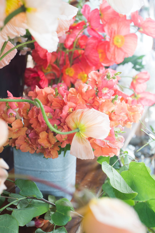 RA_spring beauty day_flowers-201604306627.jpg