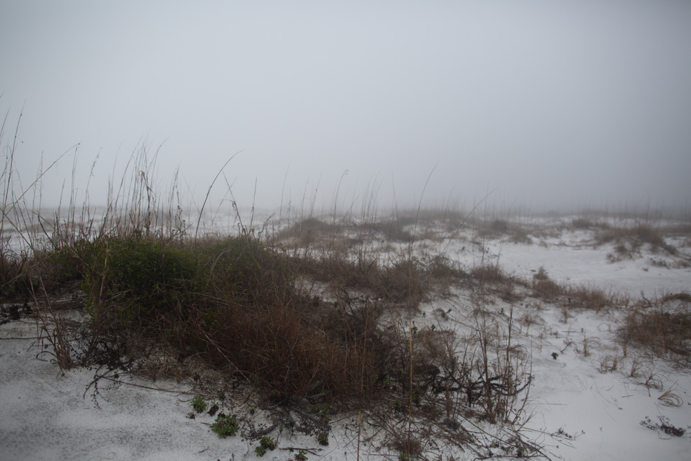 KB_foggy-beach-3737.jpg