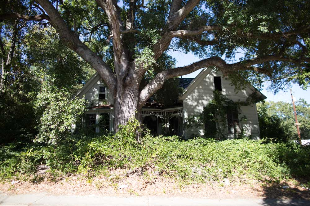 KB_forgotton-home-9228.jpg