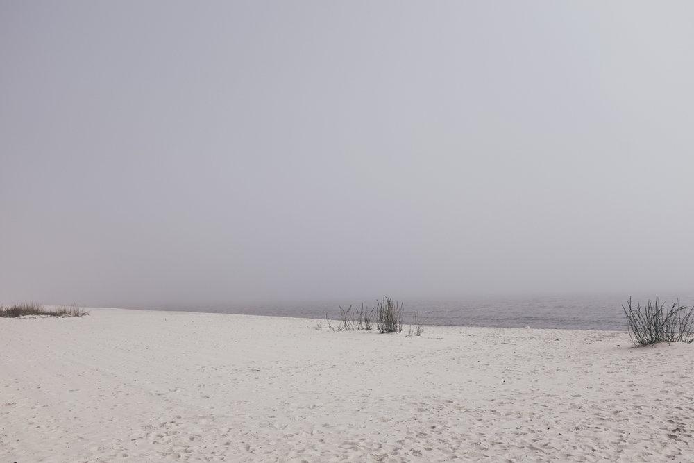 KK_foggybeach-1471.jpg