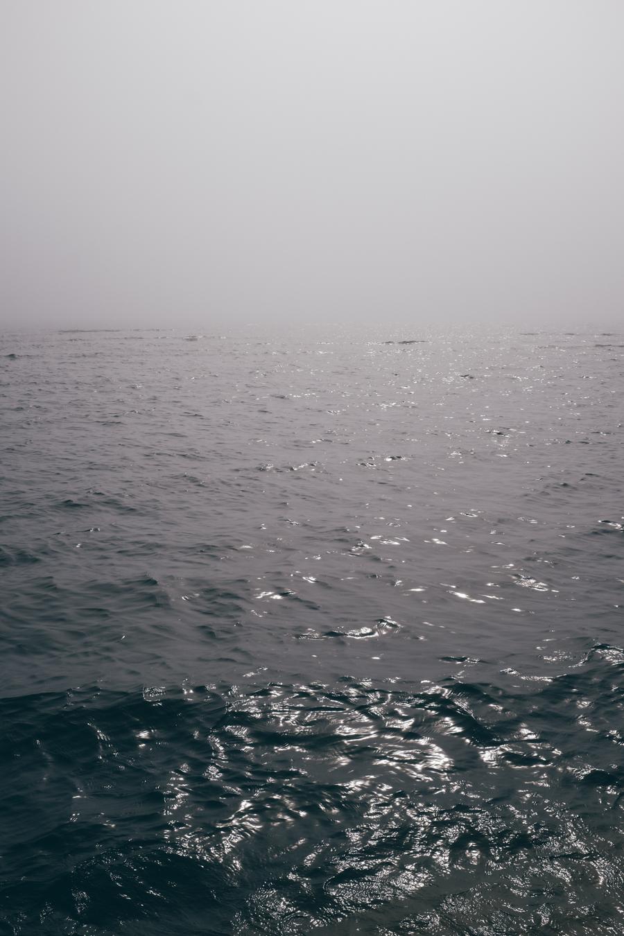KK_foggybeach-1483.jpg
