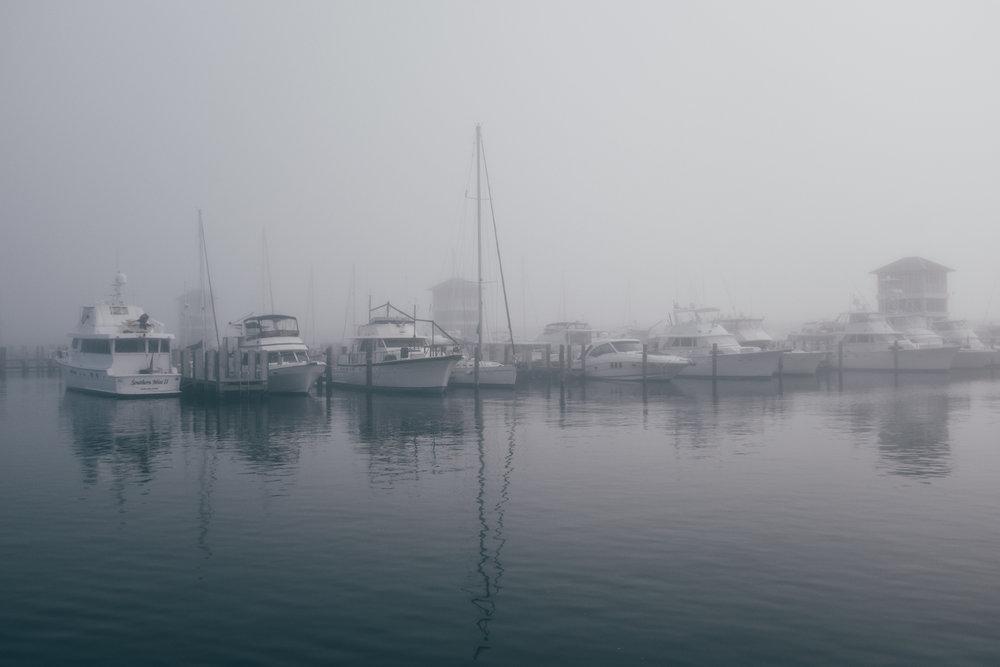 KK_foggybeach-1577.jpg