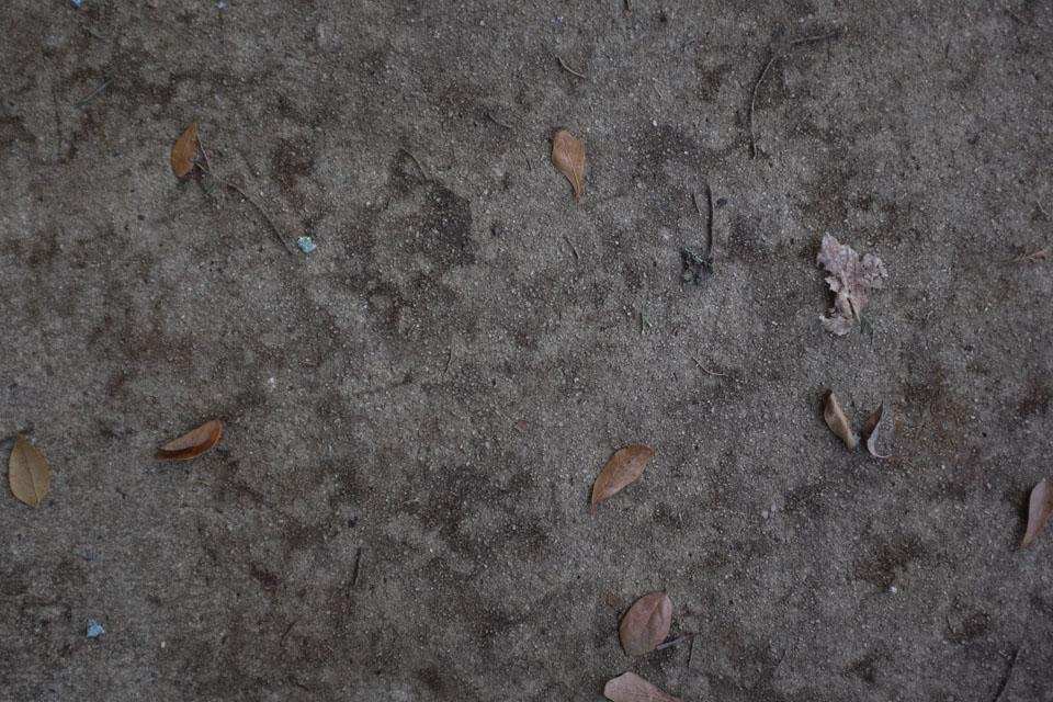 rw-pavement inspirations-5673.jpg