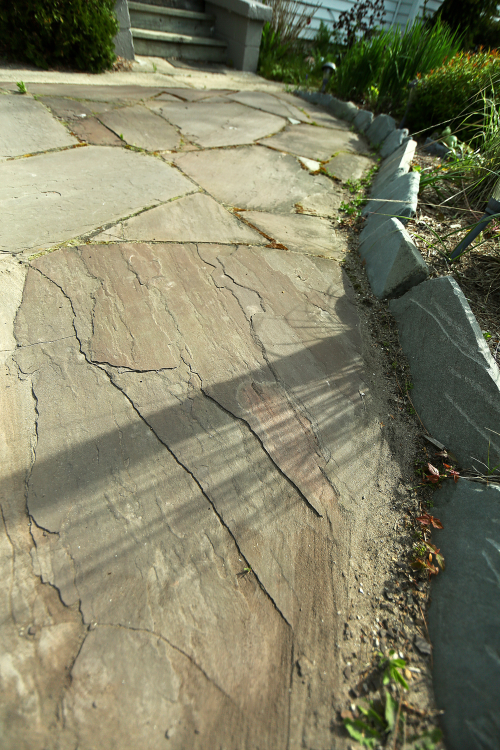 elberta patio up close(14mm).jpg