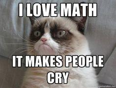 grumpy cat math.jpg