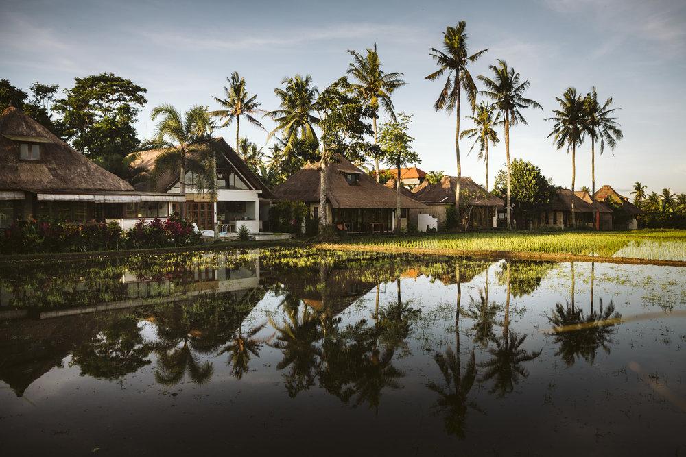 Bali 2018 (55).jpg