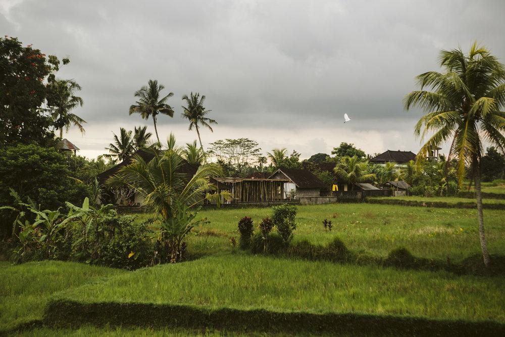 Bali 2018 (62).jpg