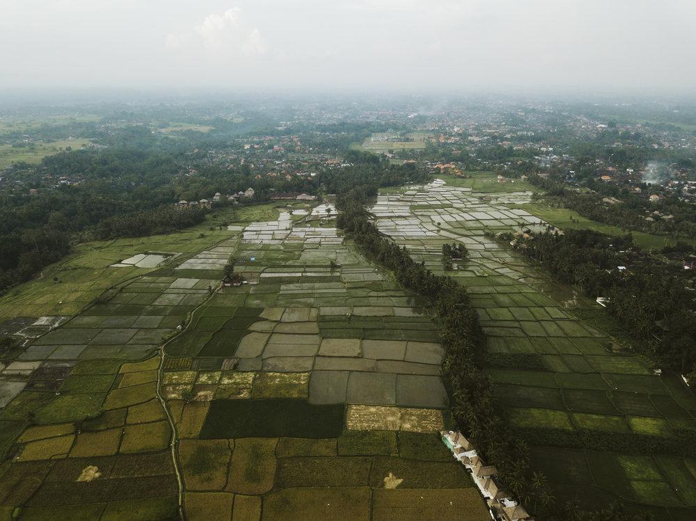 Bali 2018 (279).jpg