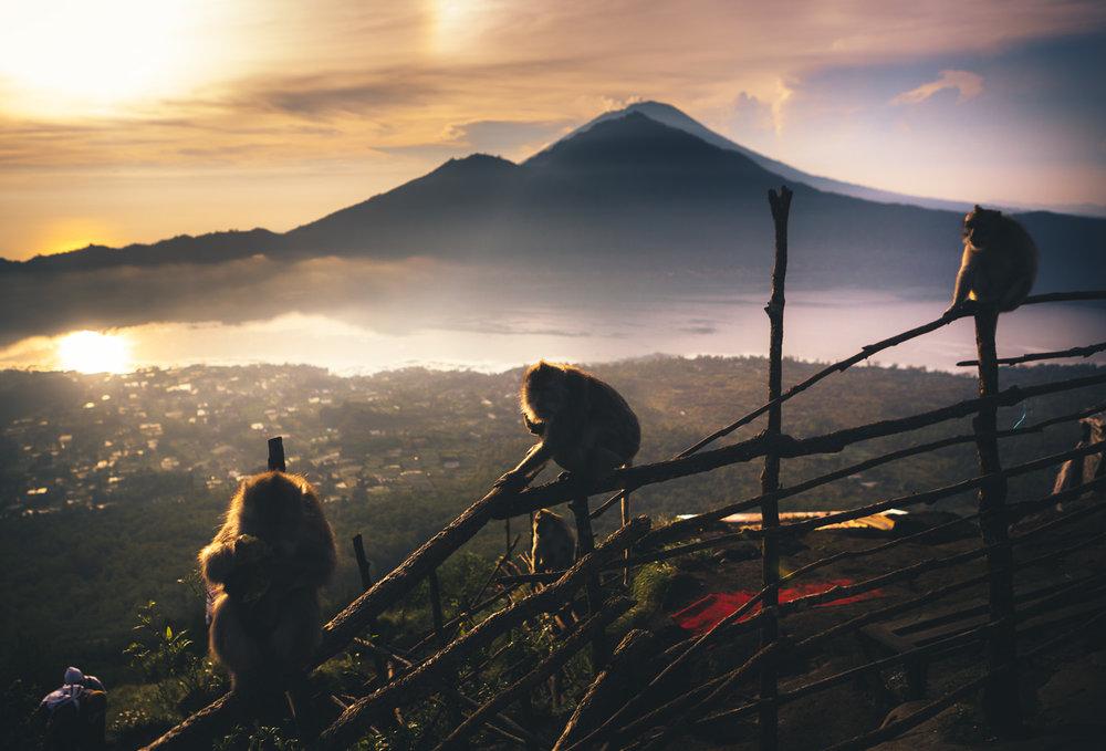 Bali 2018 (305).jpg