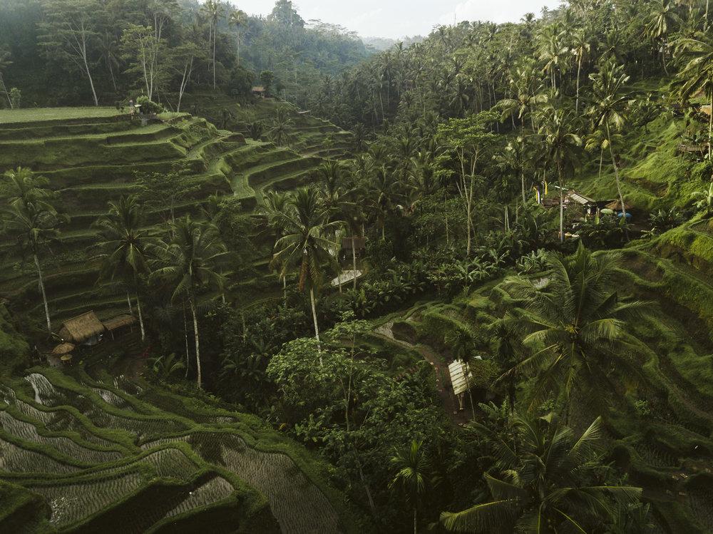 Bali 2018 (367).jpg