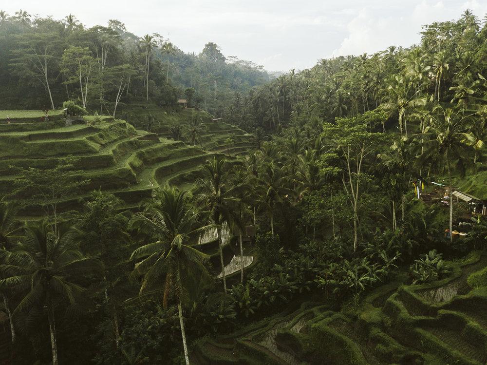Bali 2018 (368).jpg