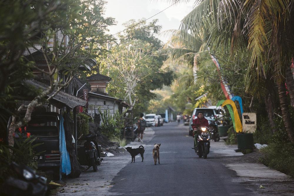 Bali 2018 (407).jpg