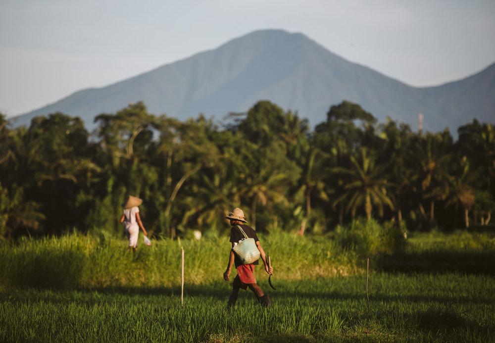 Bali 2018 (414).jpg