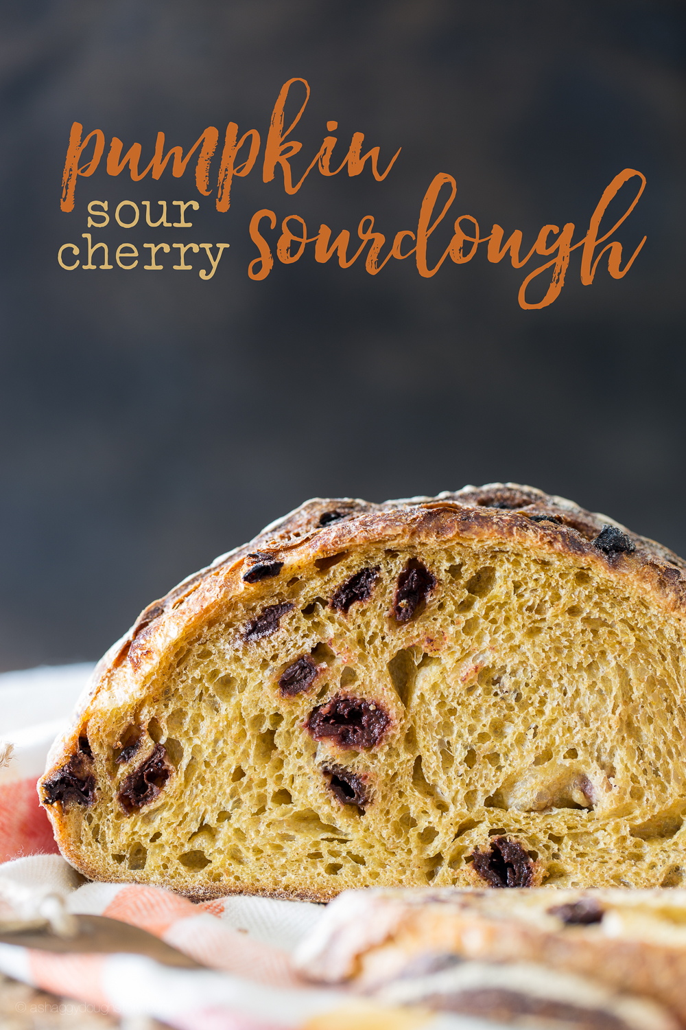 Pumpkin_Sour_Cherry_Sourdough_Bread-4.jpg