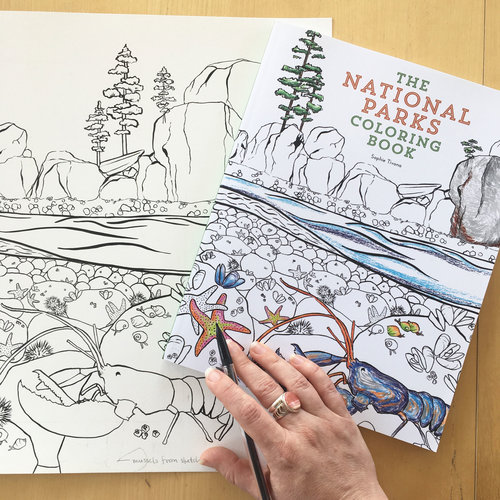 Image Result For Sophie Tivona The National Parks Coloring Book 9780062560018 Books