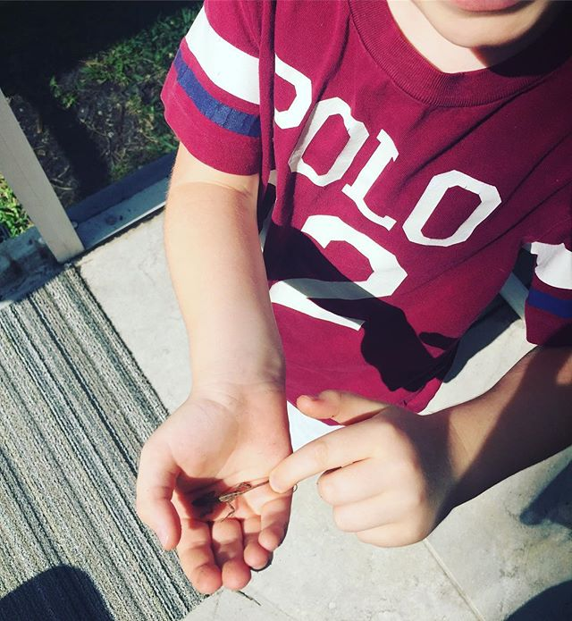 Fidget spinner? IPad? Laptop or iPhone? Nada! In 5 days with my 4 1/2 year nephew I never saw him with a single gadget in his hands, instead, he threw balls, built with Legos and yes-caught and released tiny lizards with his hands. Take time out of your Monday to unplug and connect with nature! #mondaymorning #mondaymotivation #yogaeverywhere #yoginiontheloose #nephew #sobrino