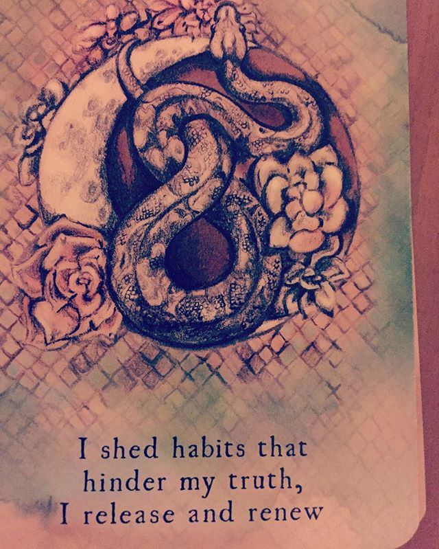 All week visiting my nephew, snakes kept coming up. From the snakeskin he found in their yard to reports of snakes in my brother's office to coming home to find this card right after the new moon! It says 'I shed habits that hinder my truth, i release and renew'  Ride the snake!!! #snakes #snakesofinstagram #serpentmedicine #serpent #newmoon #yoginiontheloose #santosha-escapes