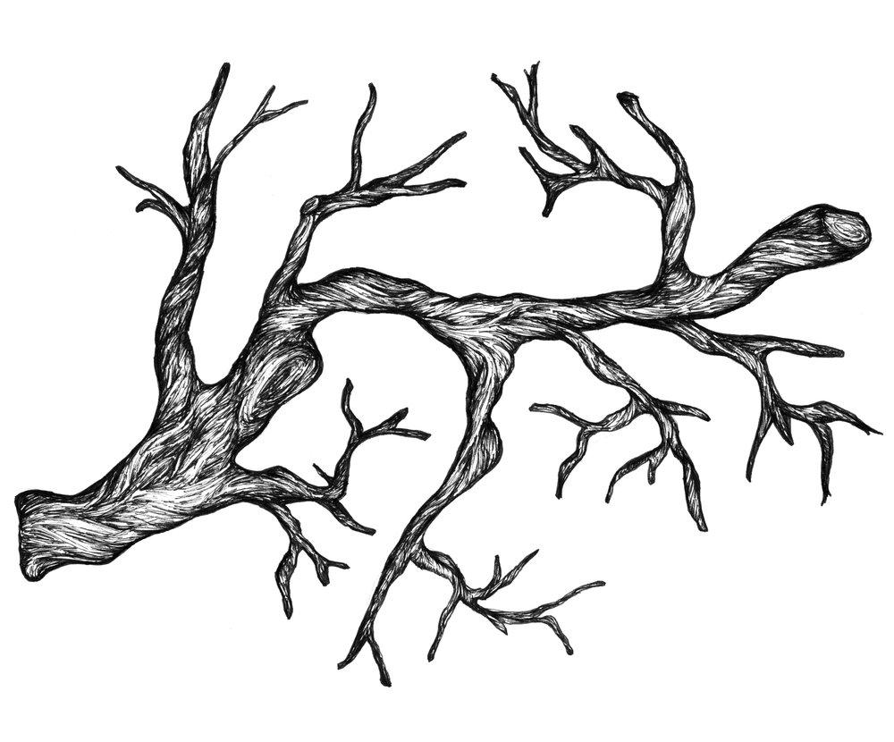 illustration4_branche.jpg