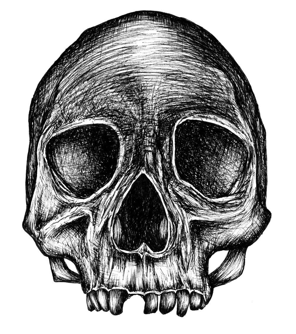 illustration8_crane.jpg