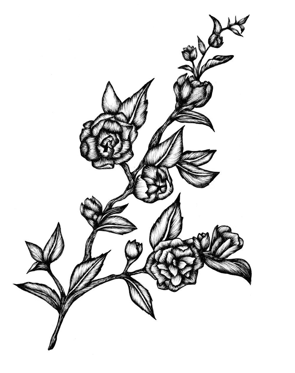 illustration21_fleurs.jpg