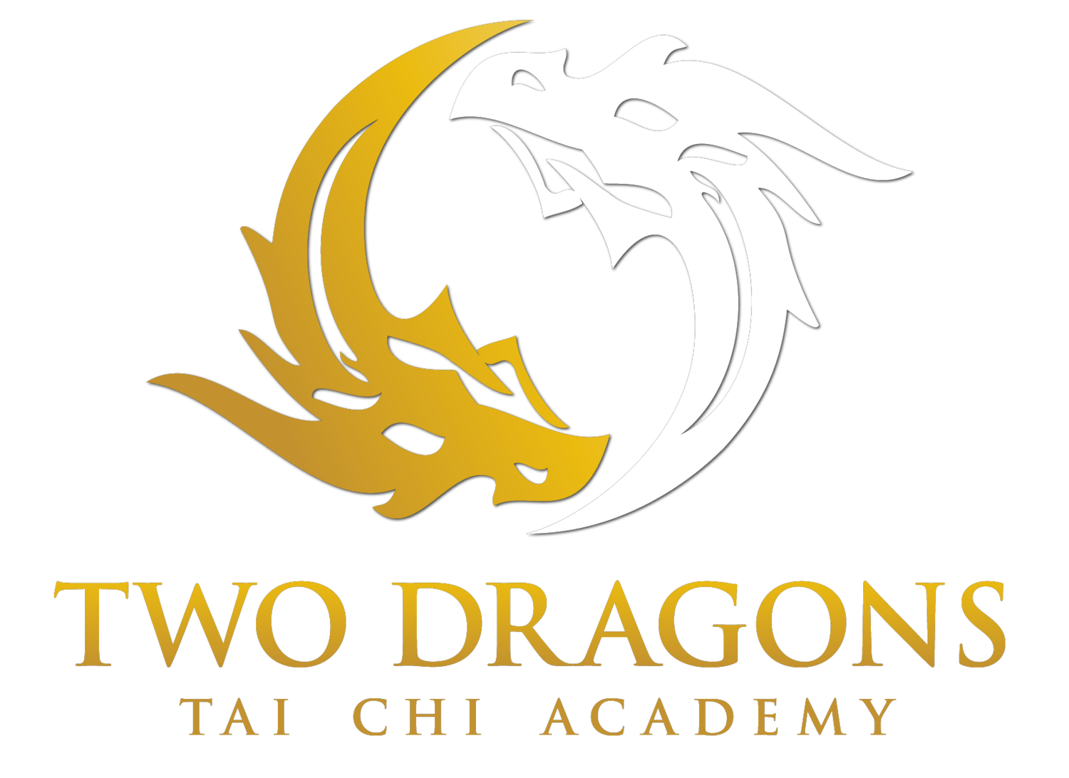 Two Dragons Tai Chi