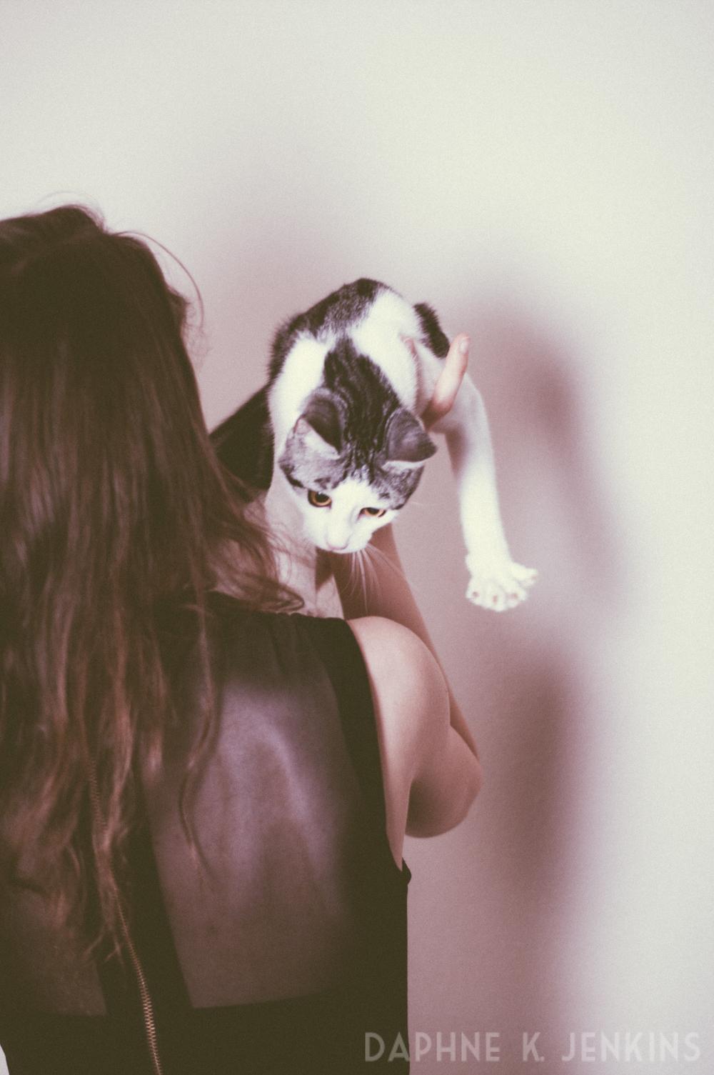 EAP_Kitty-2.jpg
